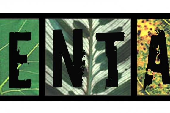 environmentalist bumper sticker