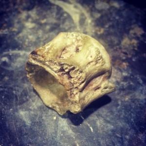 Cast concrete vertebrae
