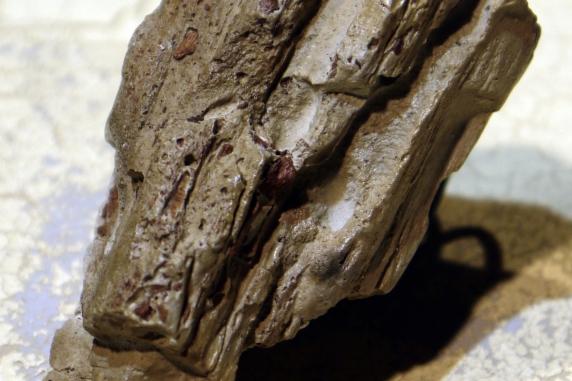 driftwood wood ring